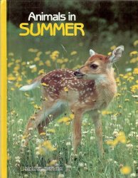 Animals in Summer